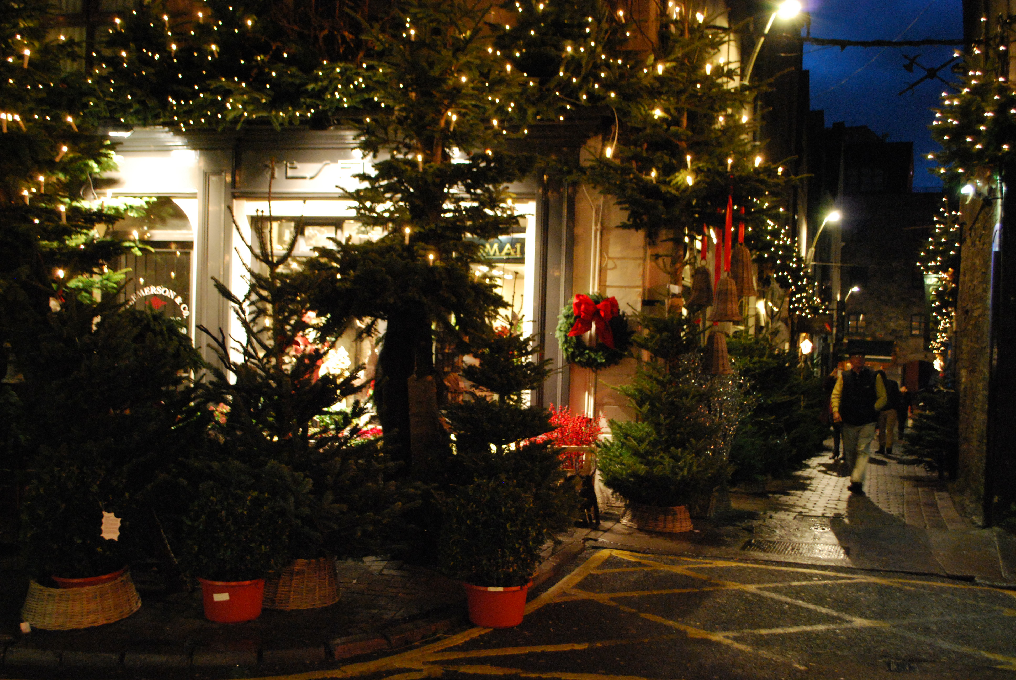Twinkling White Christmas Lights