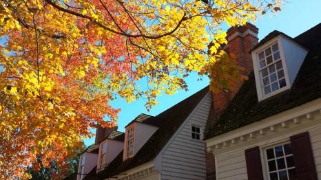 leaves Williamsburg