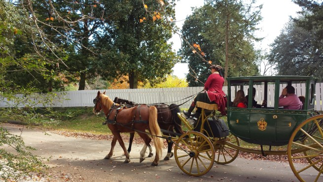 Horse drawn carriage Williamsburg